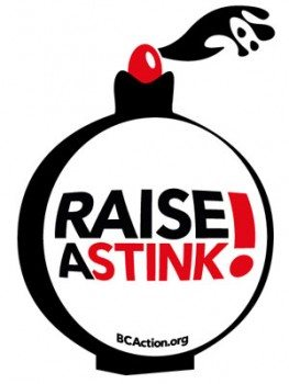 Breast Cancer Action Raise A Stink Logo