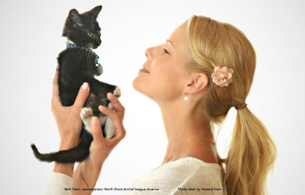 Black cat_Beth Stern Spokesperson North Shore Animal League America