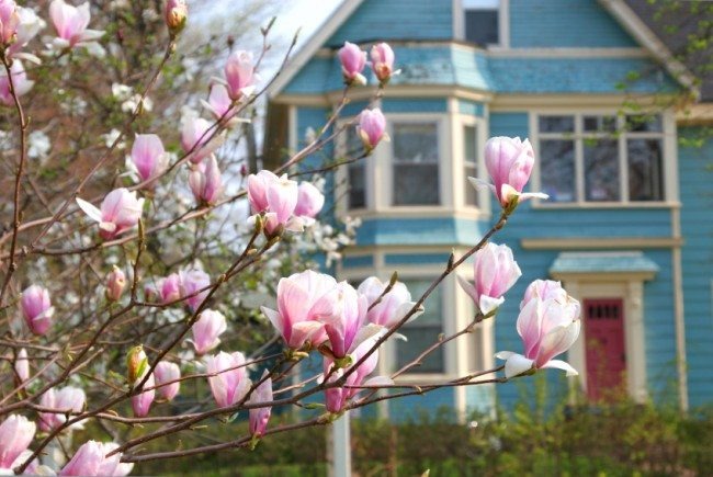 fix-it friday: spring home maintenance tips diy on the inside
