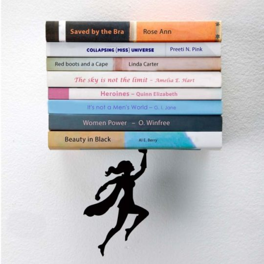 book lovers book shelf
