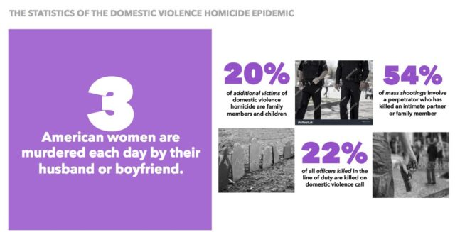 Domestic Violence Homicide stat
