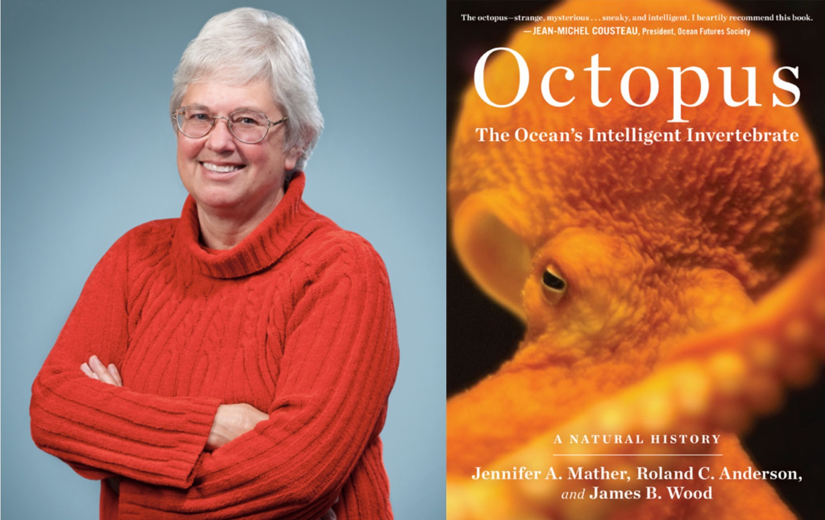 octopuses at work and play jennifer mather and cephalopod cognition